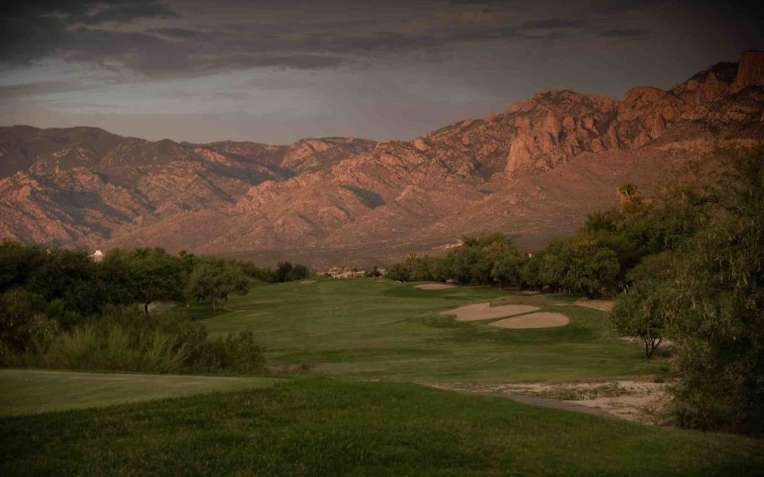 Tom Plantz: Making the Right Decision for Oro Valley